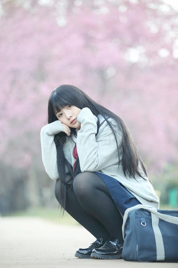Japanese school girl dress sitting with sakura flower nature view. Japanese school girl dress sitting with sakura flower nature stock images
