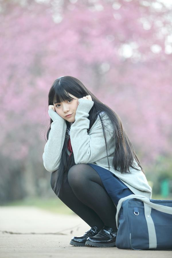 Japanese school girl dress sitting with sakura flower nature view. Japanese school girl dress sitting with sakura flower nature royalty free stock images
