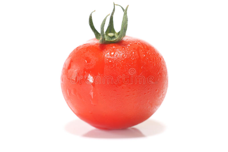 Japanese small tomato close up with drop. In white stock photos