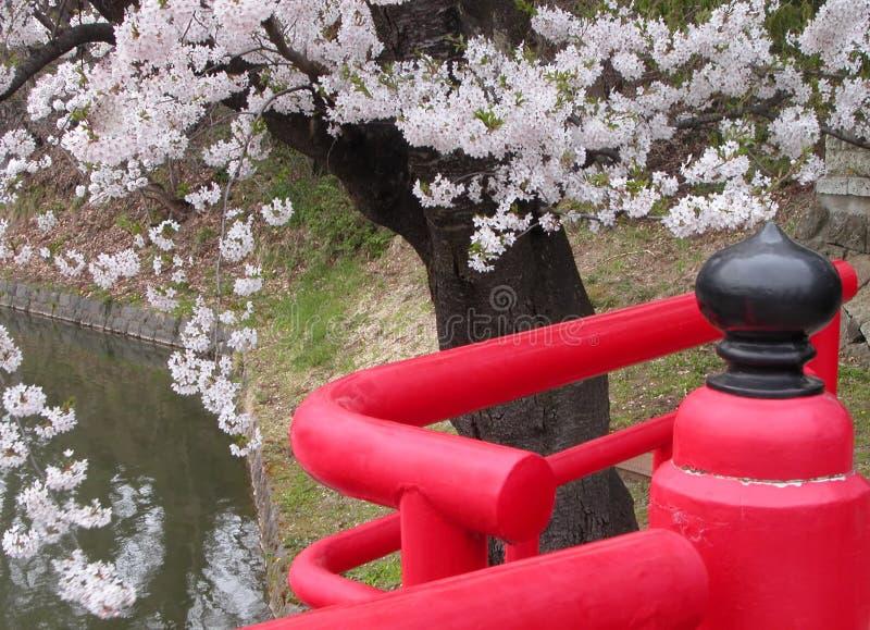 Japanese spring bridge stock photo