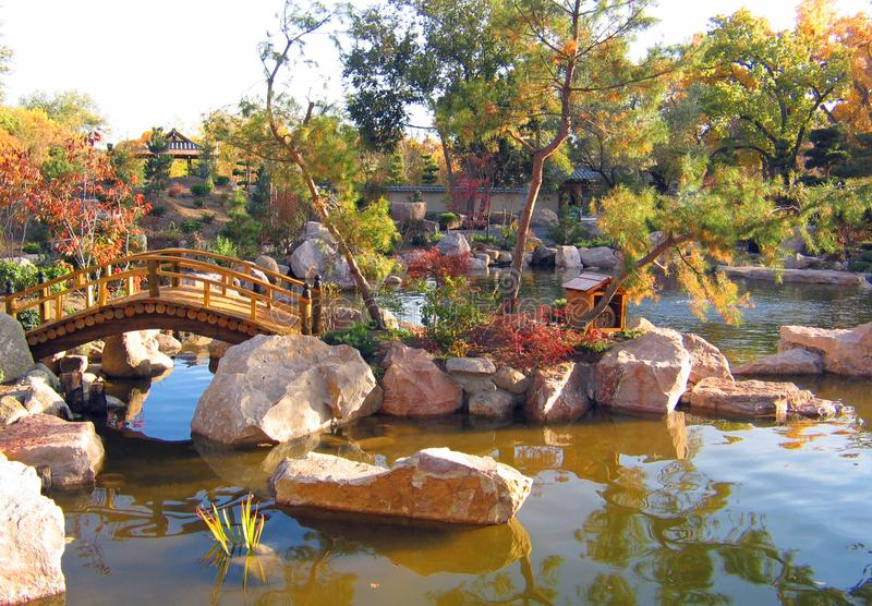 Japanese statue Gardens and bridges in early fall. Japanese Gardens in early fall at the botanical gardens in Albuquerque New Mexico. Waterfalls, oriental royalty free stock photography