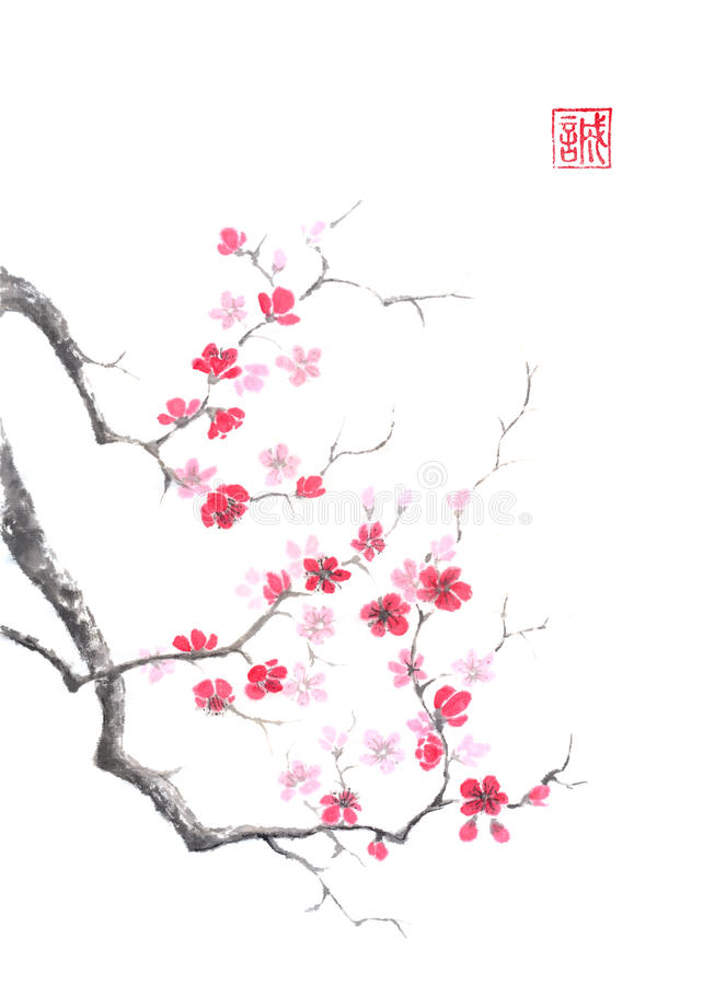 Japanese style sumi-e pink plum blossom ink painting. royalty free illustration