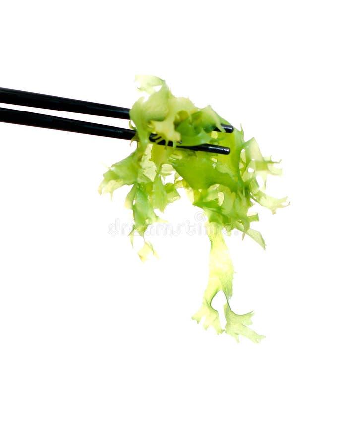 Free Japanese Sushi Algae Stock Photography - 3856792