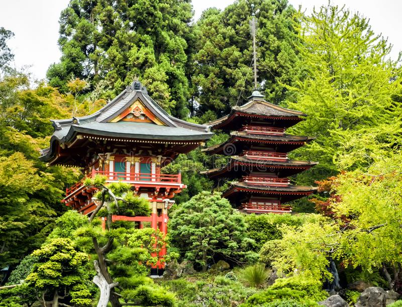 Japanese Tea Garden, Golden Gate Park, San Francisco, California, CA ...