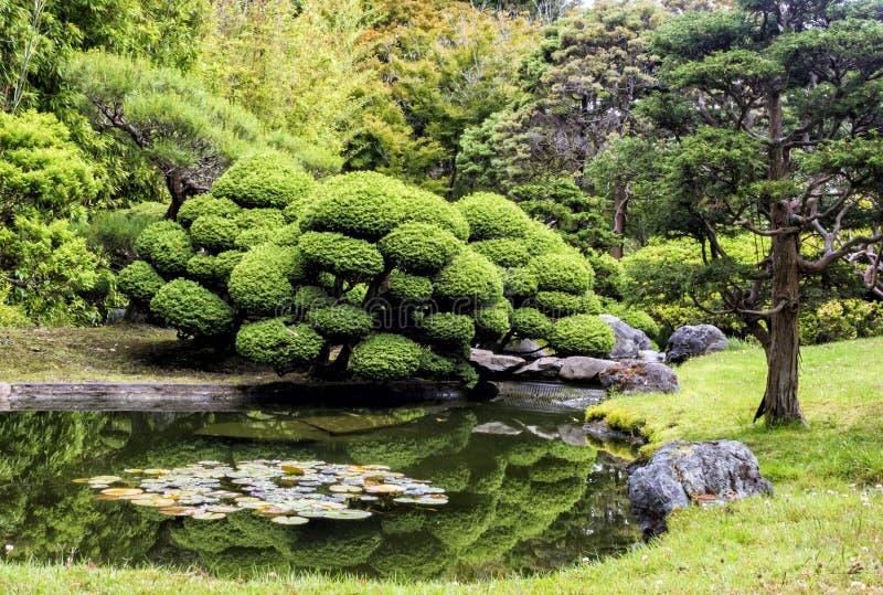 Japanese Tea Garden, Golden Gate Park, San Francisco, California, CA. USA royalty free stock photos