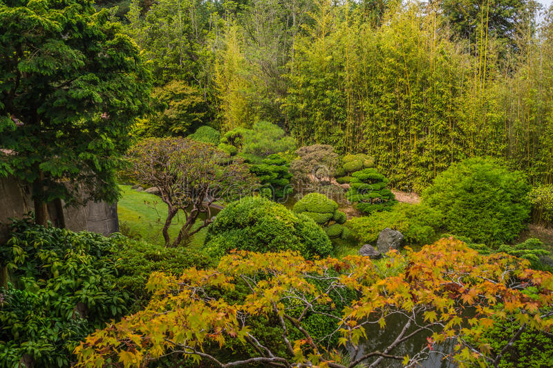 Japanese Tea Garden in The Golden Gate Park, San Francisco,USA. royalty free stock photo