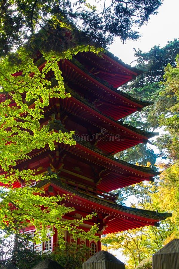 Japanese Tea Garden stock photos