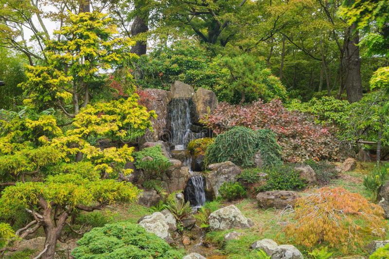 The Japanese Tea Garden, San Francisco. royalty free stock photos