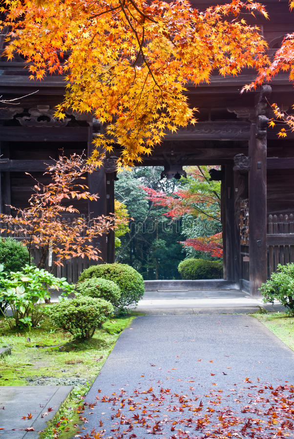 Download Japanese temple exit stock photo. Image of autumn, temple - 17205036