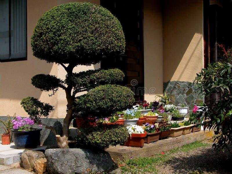 Download Japanese veranda stock illustration. Image of pots, beauty - 7808
