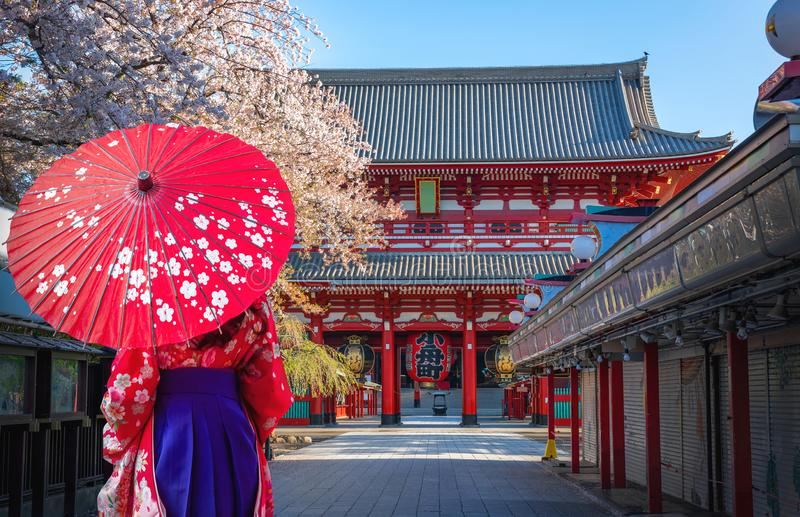 .Japanese women dressed in kimonos look at temples. Sensoji during cherry blossoms Asakusa City, Tokyo, Japan royalty free stock image