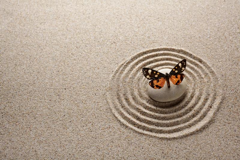 Japanese zen garden stone and butterfly for concentration and relaxation sand and rock for harmony and balance royalty free stock images