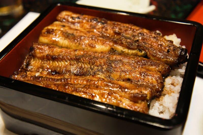 Japanische Aalreisschale lizenzfreie stockfotos