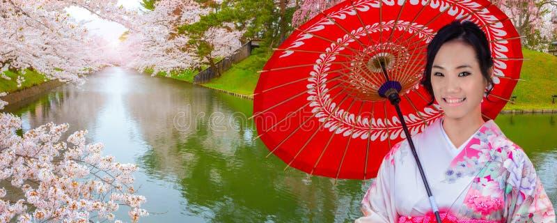 Japanische Frau im Kimono-Kleid mit voller Blüte Kirschblüte - Cherry Blossom an Hirosaki-Park lizenzfreie stockfotografie