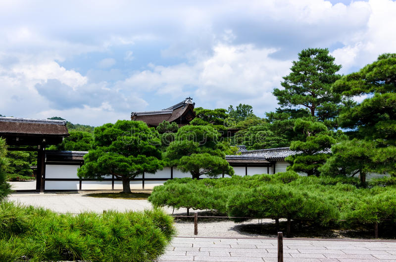 Japanische Gartenkiefer, Kyoto Japan lizenzfreie stockfotos