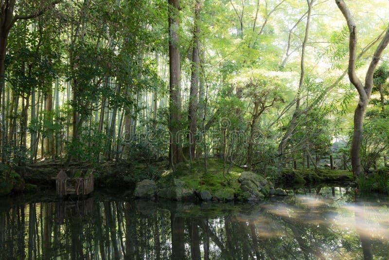 Japanische orientalische grüne Gartenansicht und -teich lizenzfreie stockfotos