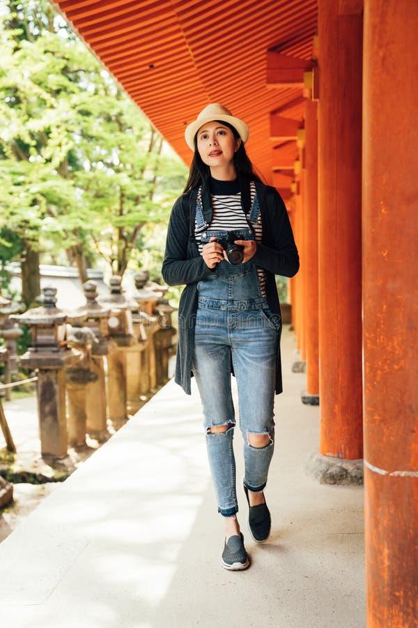Japanische Steinlaternen im Garten im Frühjahr stockfotografie
