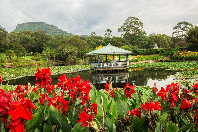 Japanischer Garten in botanischen Gärten Wollongong, Wollongong, New South Wales, Australien stockfotografie