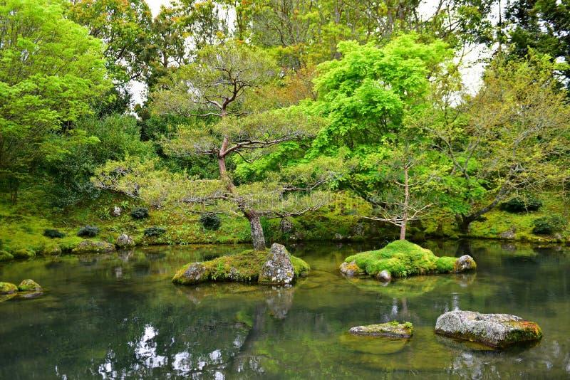 Japanischer Garten der Betrachtung in Hamilton Gardens lizenzfreie stockbilder