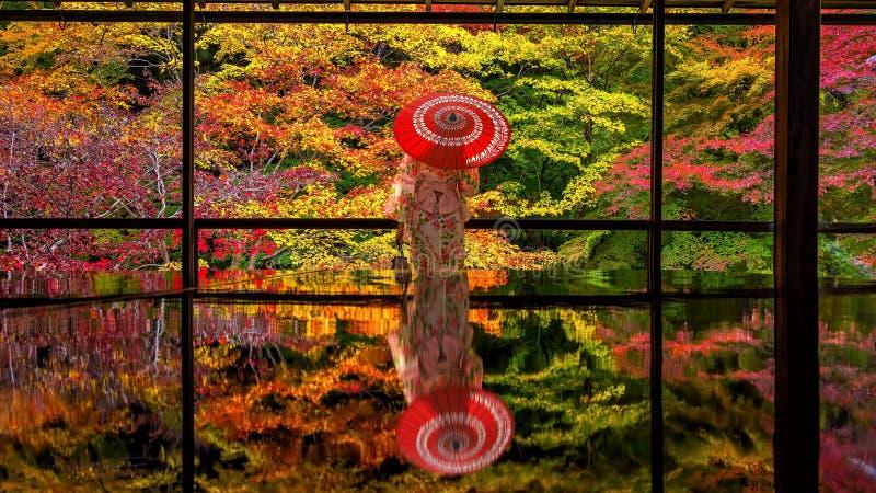 Japanischer Garten des bunten Herbstes von Rurikoin-Tempel in Kyoto stockfotografie