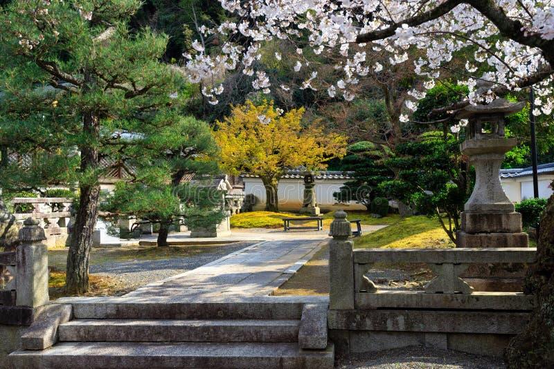Japanischer Garten am Frühling lizenzfreie stockfotografie