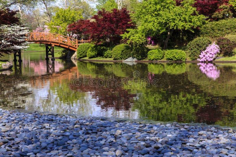 Japanischer Garten mit Brücke stockbilder
