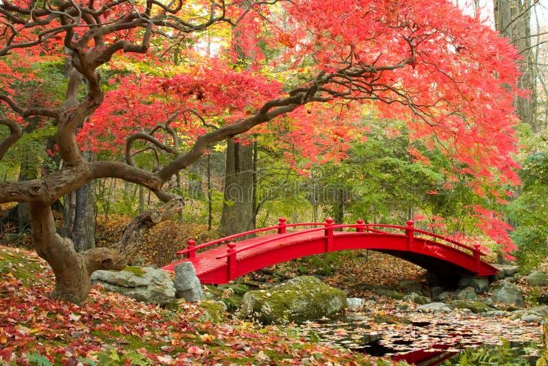 Japanischer Garten und rote Brücke lizenzfreies stockbild