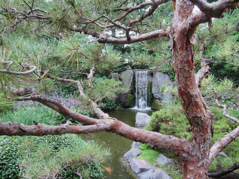Japanischer Garten-Wasserfall lizenzfreies stockbild