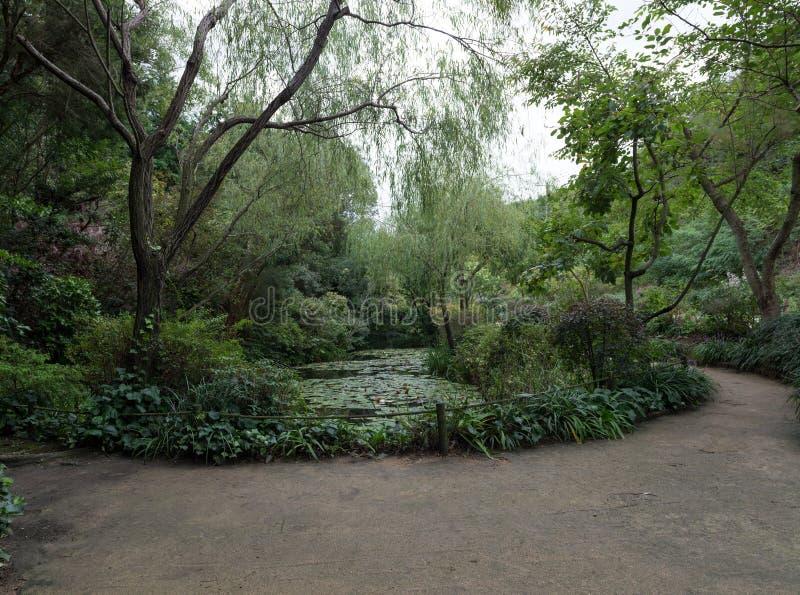 Japanisches Gartenlandschaftspanorama stockbilder