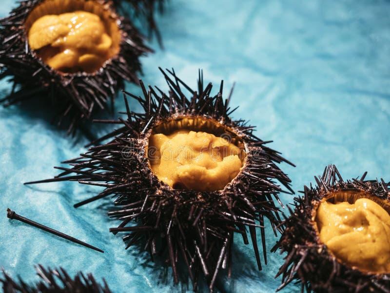 Japanisches neues rohes Lebensmittel des Seeigels lizenzfreie stockfotos