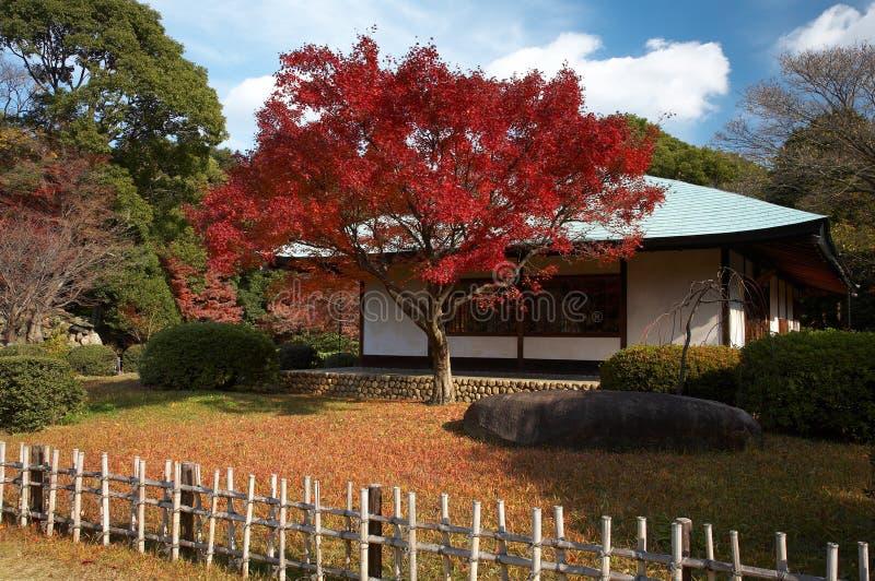 Japanisches Teehaus Lizenzfreie Stockbilder
