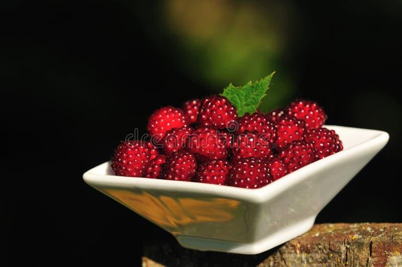 Download Japanisches Wineberries stockbild. Bild von hintergrund - 27731369