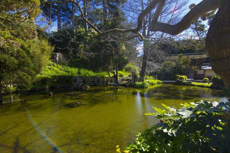 Japans Koi Pond Garden royalty-vrije stock foto's