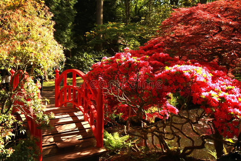 Japans Park in Haguee stock foto