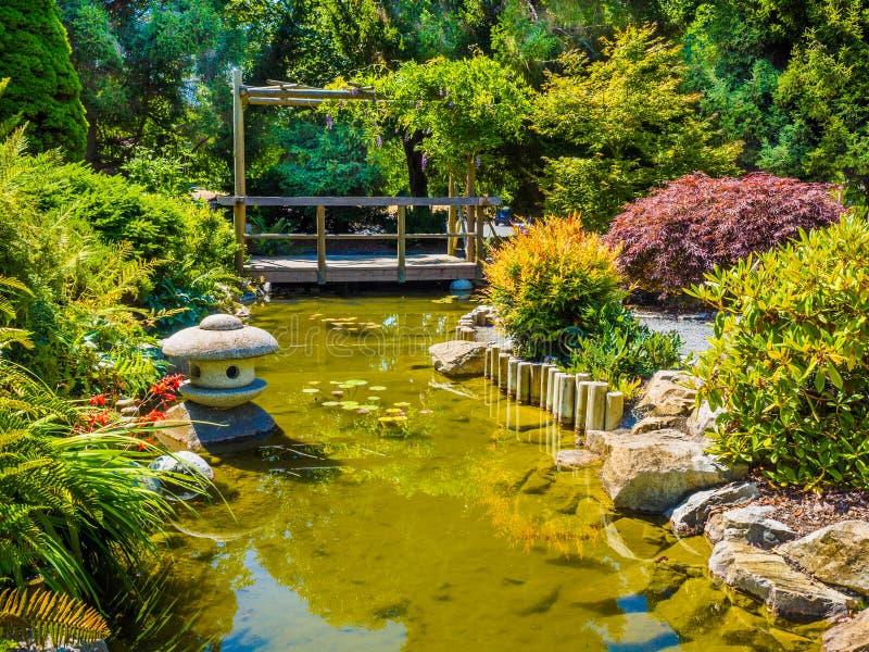 Japans tuinontwerp met waterstroom en brug stock foto