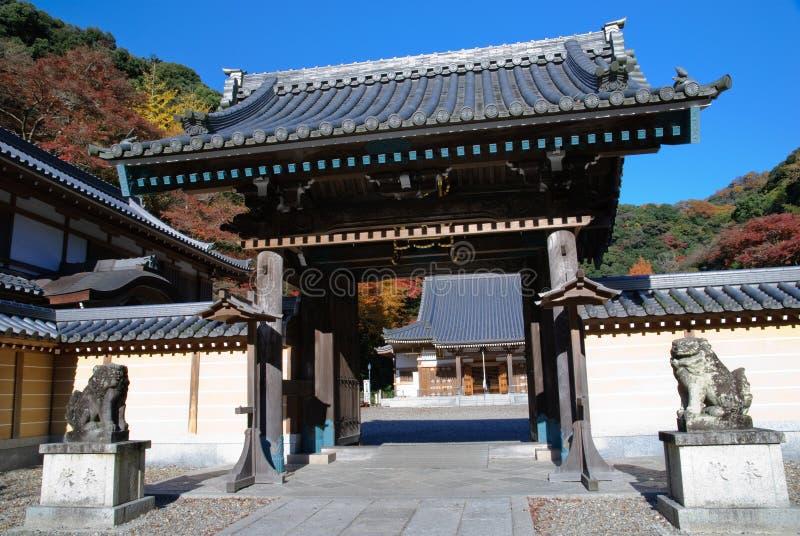 Japanse esdoorns met een tempel royalty-vrije stock afbeelding
