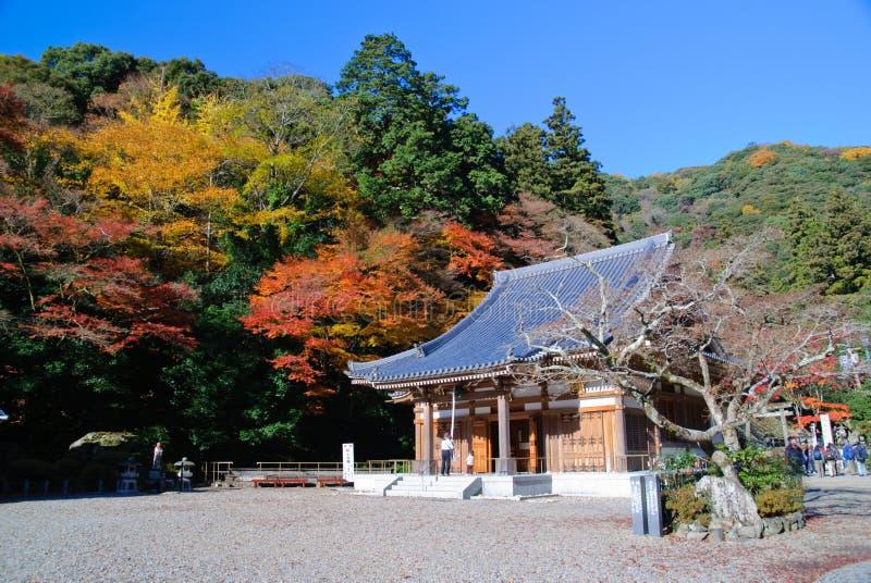 Japanse esdoorns met een tempel. royalty-vrije stock foto's