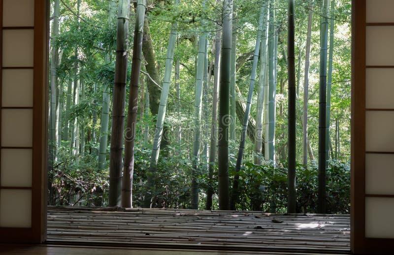 Japanse klassieke venster en bamboetuin stock foto's