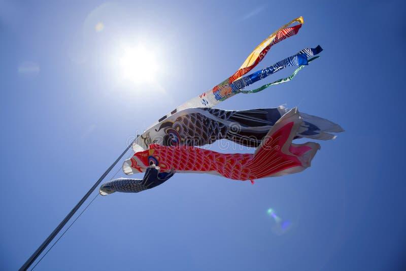 Japanse Koinobori-Karpervliegers stock foto's