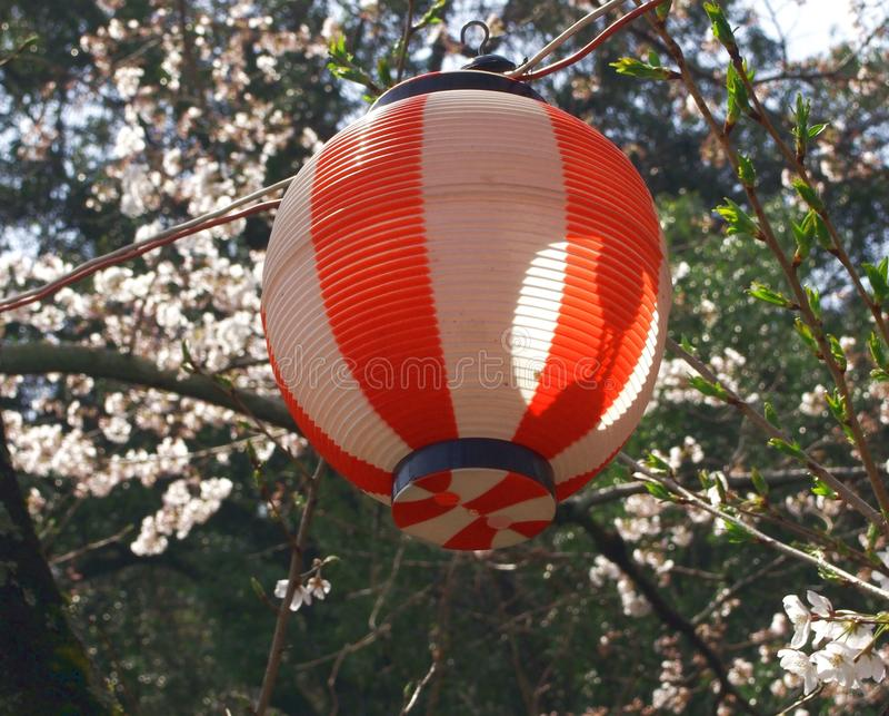 Japanse lantaarn stock afbeeldingen