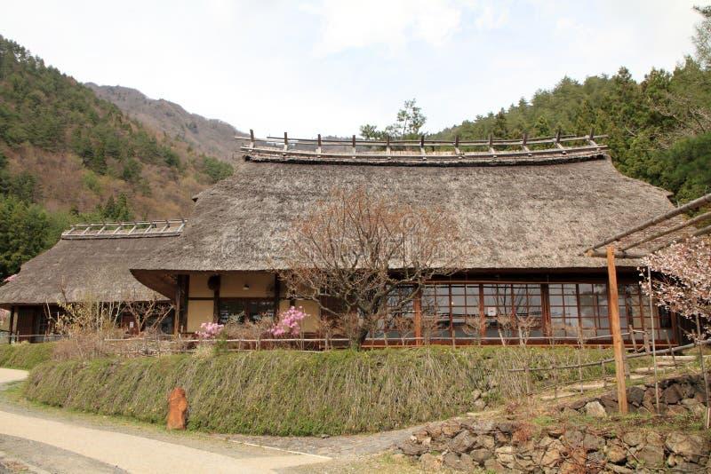 Japanse met stro bedekte van de dakhuis en kers bloesems royalty-vrije stock fotografie