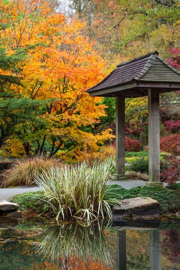 Japanse pagode en grassen die in de vijver met kleurrijke bomen op de achtergrond in de herfst nadenken royalty-vrije stock afbeeldingen