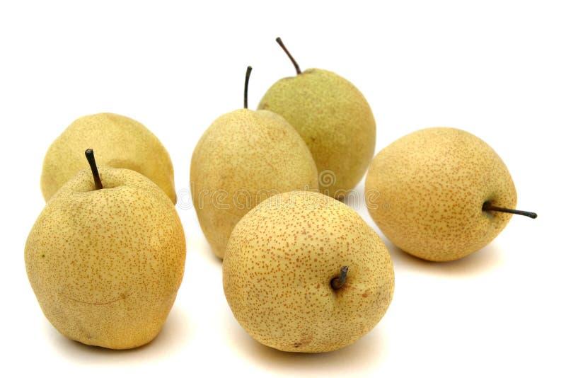 Japanse peren stock foto
