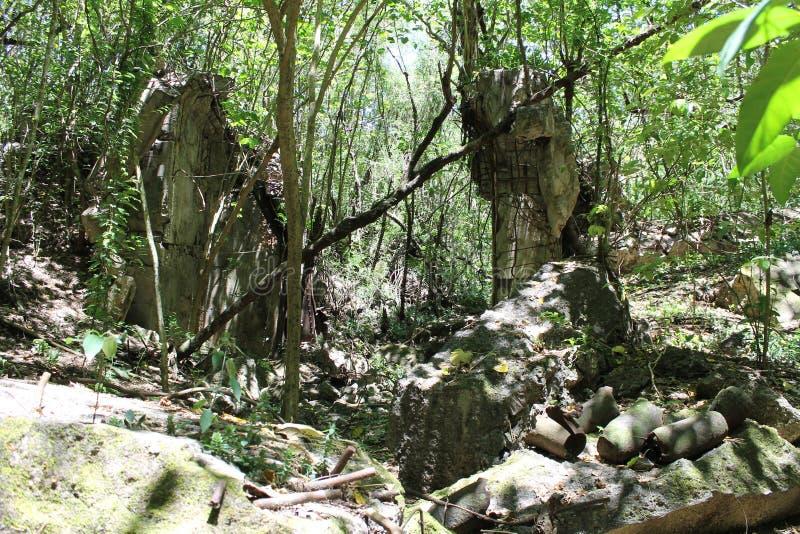 Japanse ruïnes op Tinian royalty-vrije stock afbeeldingen
