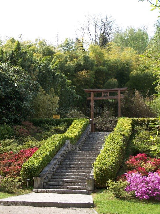 Japanse tuin in villacarlotta (IT) stock foto's