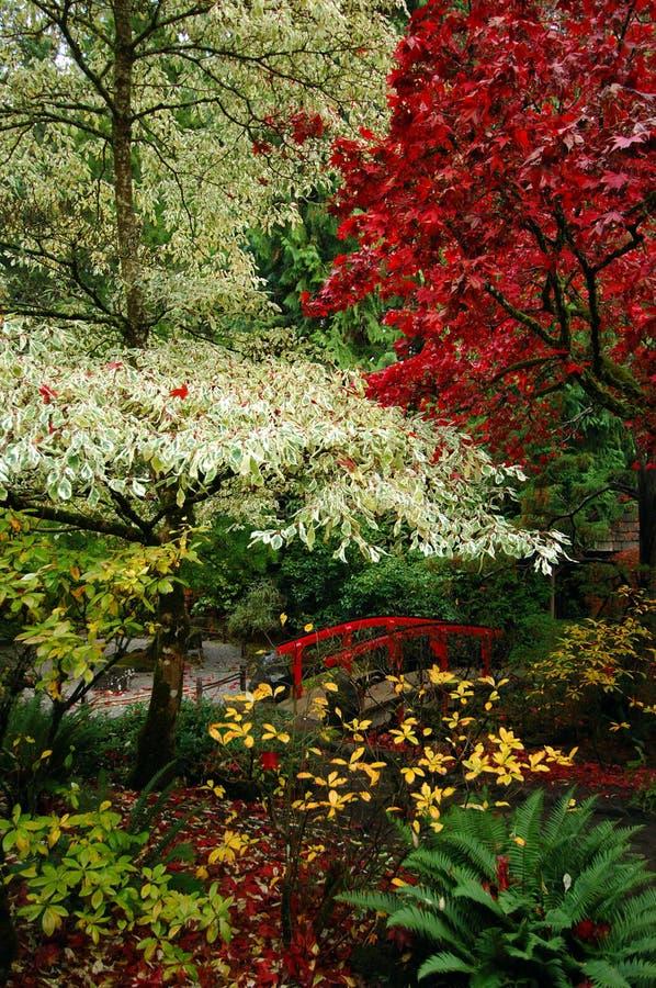 Japanse Tuinen stock afbeelding