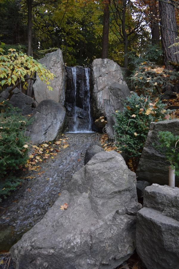 Japanse tuinen bij Manito-Park stock afbeeldingen