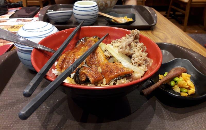 Japansk ål som grillas med skivade griskött och ris Mat lunch som äter middag royaltyfria bilder