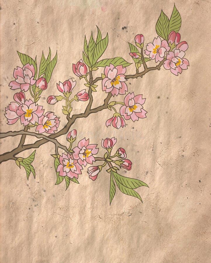 Japansk blomningkörsbär royaltyfri illustrationer