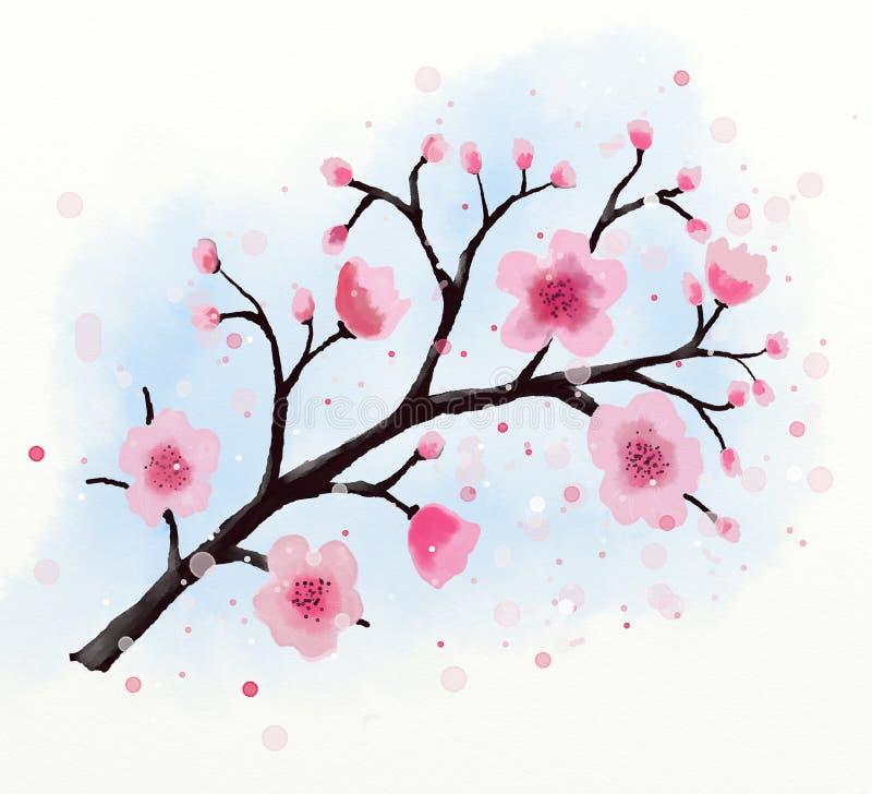 Japansk blomningvattenfärg för körsbärsrött träd royaltyfri illustrationer